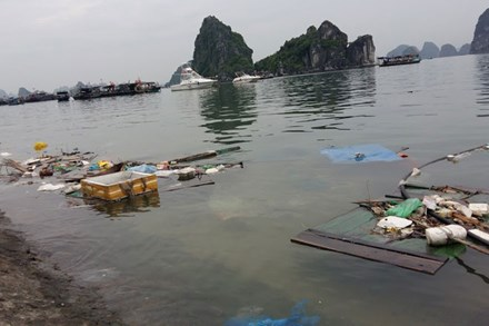 Ha Long Bay surrounded by rubbish