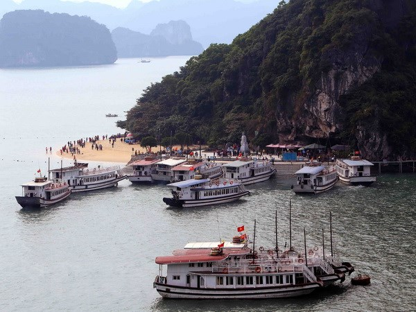 Chemical plant turned down due to Ha Long Bay environmental risks